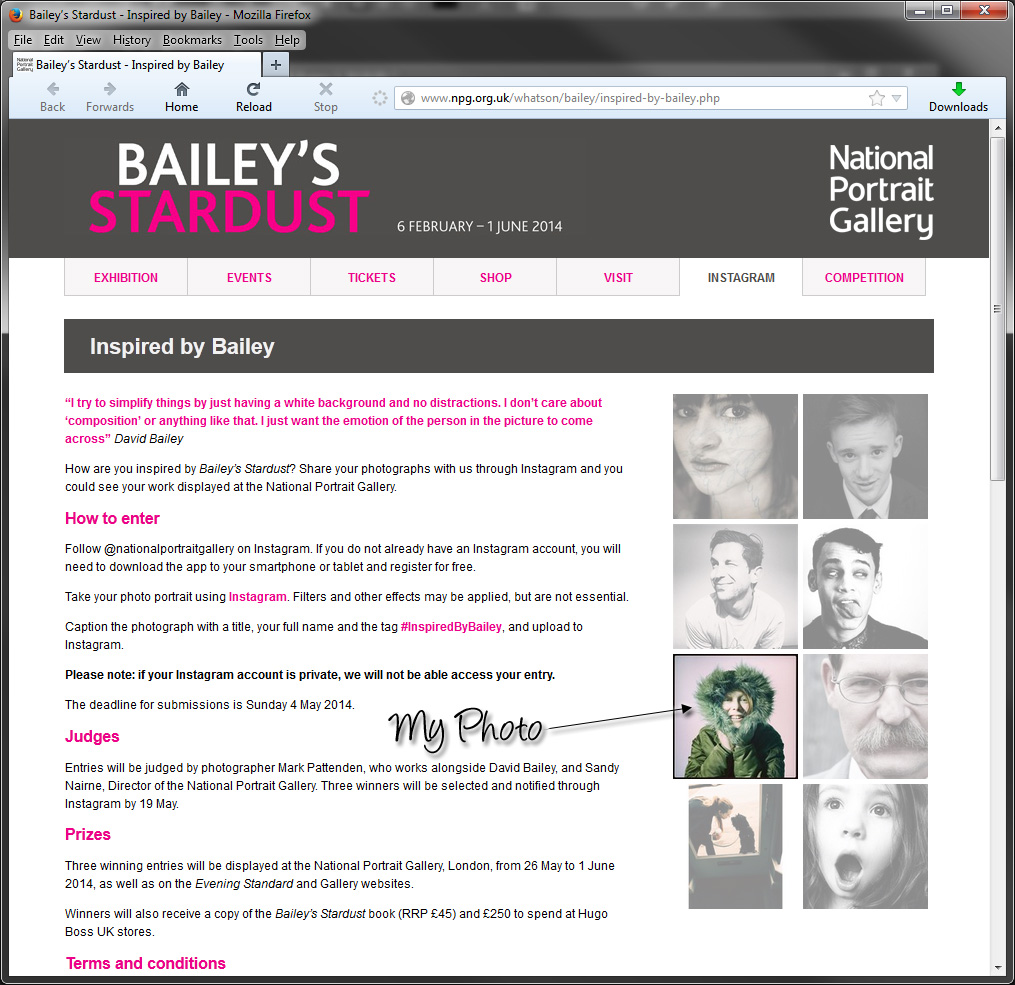 My photograph of the Bailey's Stardust website!